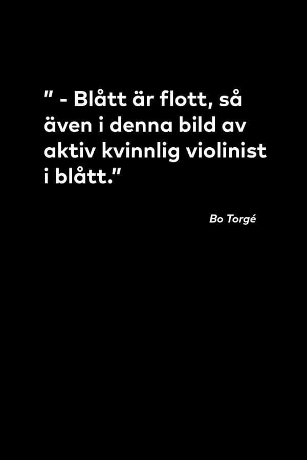 """Citat från Bo Torgé om tavlan """"Fiolspel No 2"""""""