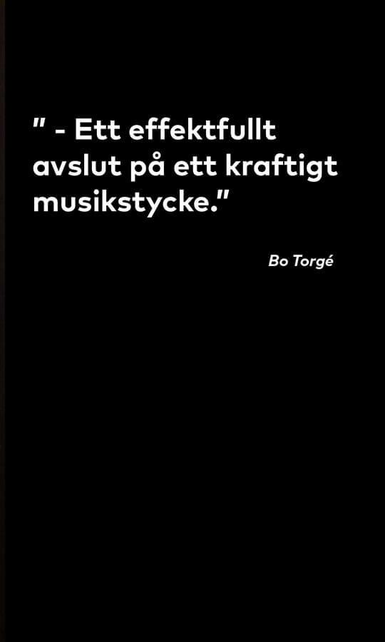 "Citat från Bo Torgé om tavlan ""The End"""