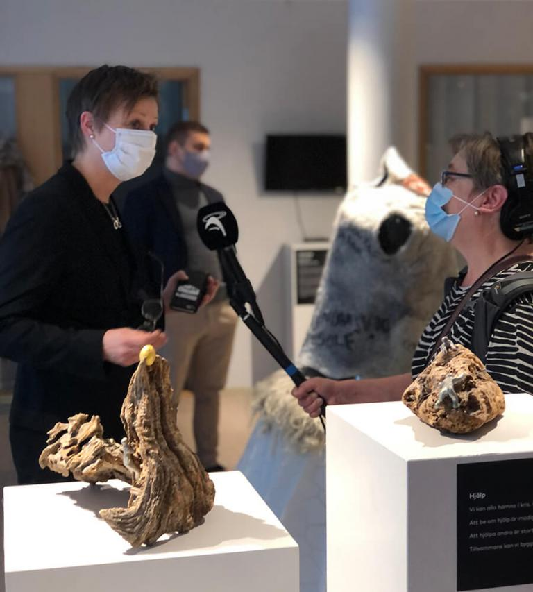 Ålands Radio is interviewing culture minister Annika Hambrudd in order to understand her part in the realisation of the exhibition .