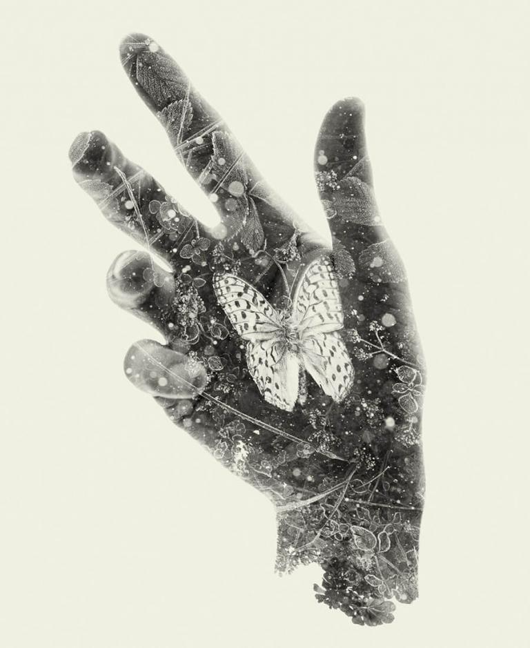 Christoffer Relander, fotoutställning vid Nordens institut på Åland. Här ses konstverket Resting + Butterfly.