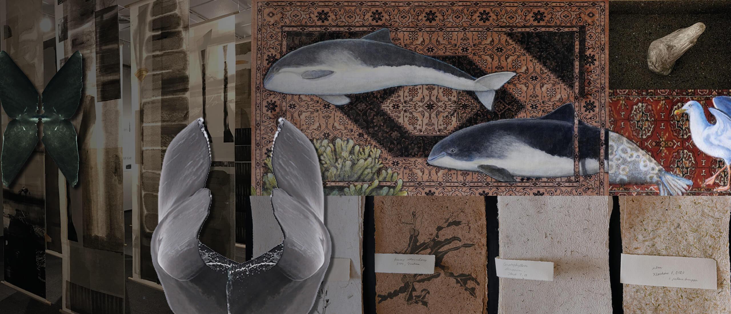 Utställningen Förändringar vid Nordens kuster, vid NIPÅ, Nordens institut på Åland