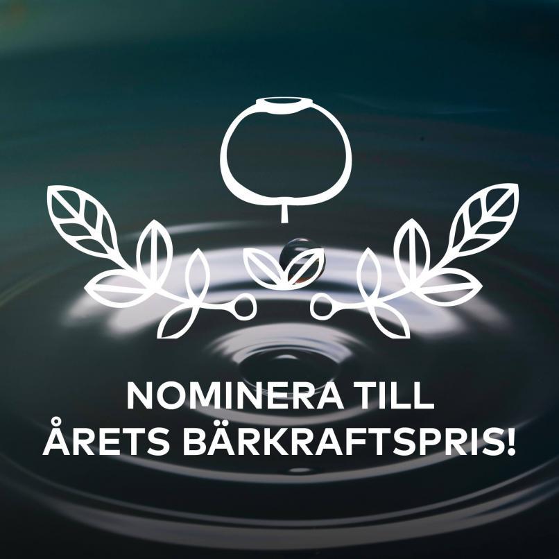 Dags att nominera till årets bärkraftspris!