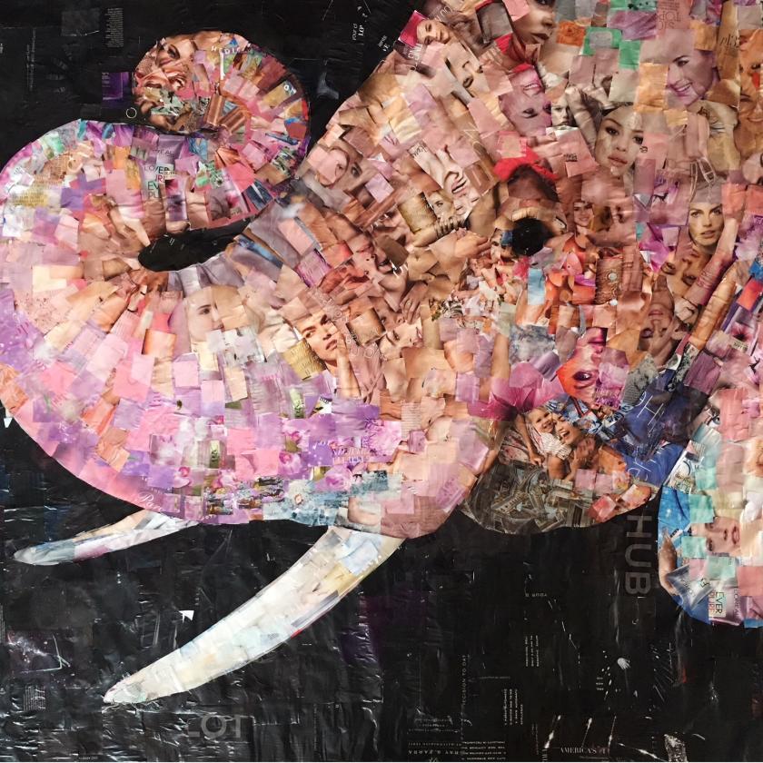 Animal Kingdom, Whitney Anderson